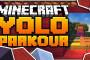 Flash Reverso Skin Minecraft